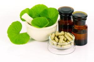 Gotu Kola and Ayurvedic Medicine